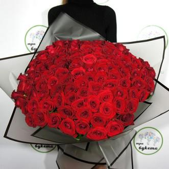 101 красная роза (Premium) 60 см.