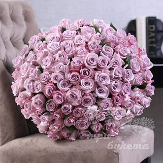 101 пурпурная роза (Premium) 60 см.