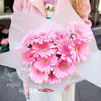 13 розовых гербер